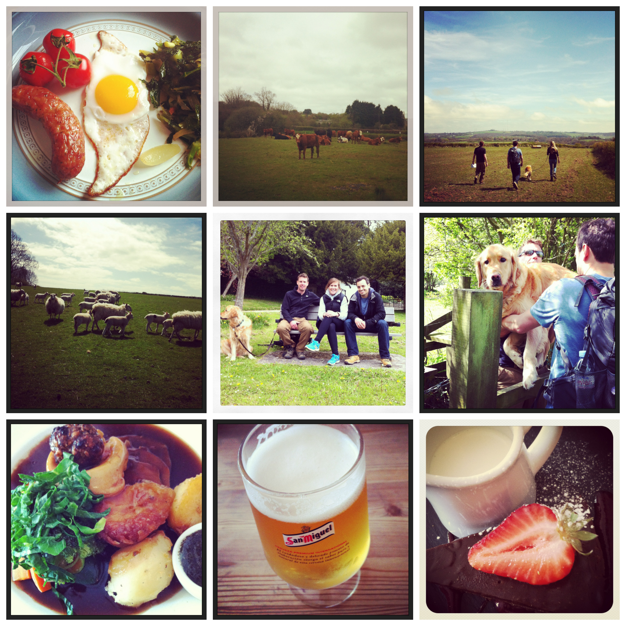 Bank Holiday Collage