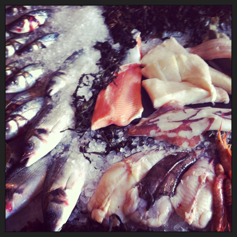 Fish at 85 counter